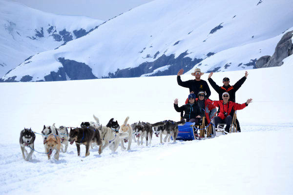 Alaska-Icefield-Expeditions-dog-sledding-1200px